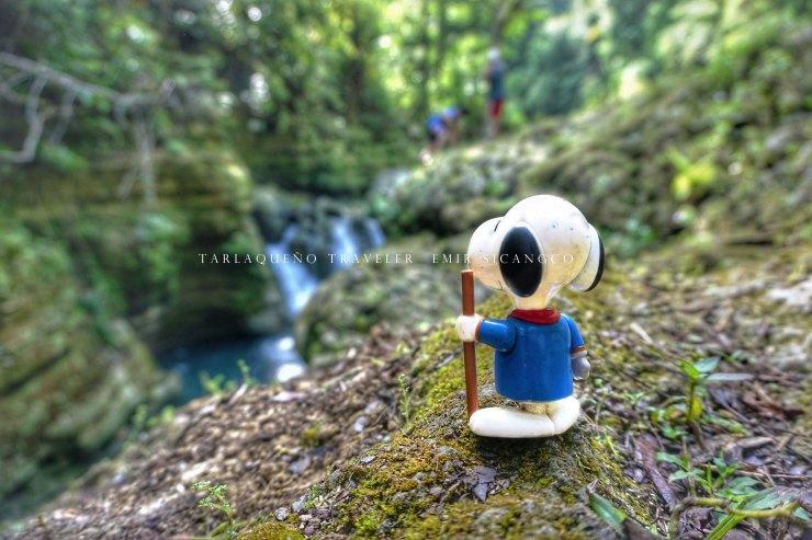 Cancalanog Falls Snoopy